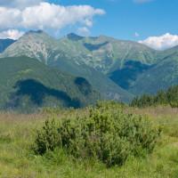 Dolina Parichvost