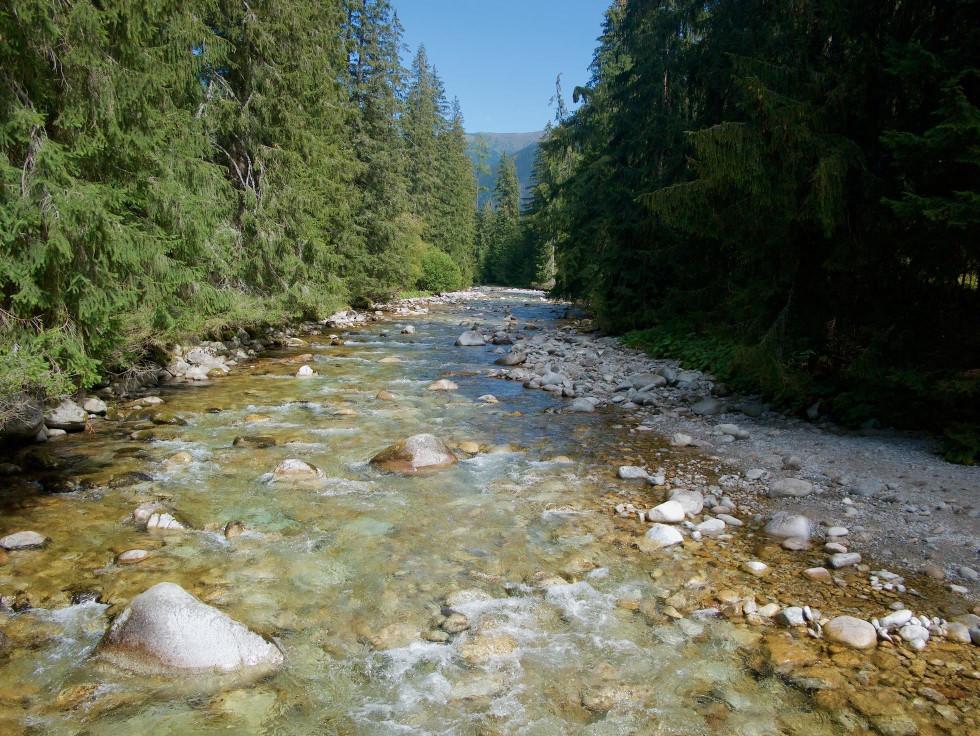 Rieka Belá nad Podbanským