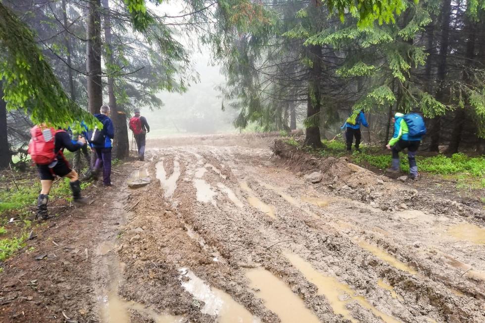 Rozryté lesené cesty s blatovými kolajami – realita slovenských lesov
