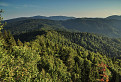 Hory lesy poľanské