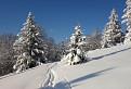 Ozajstná zima