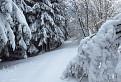 My chceme sneh !!!