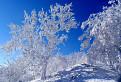 Zima konečne aj v Malých Karpatoch / 1.0909