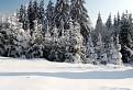 Kysucká zima / 1.1154