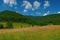 Javorníková dolina