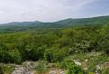 Zelené Karpaty