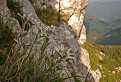 Na skalách II. / bez hodnotenia