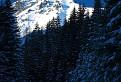Temným lesom k svetlej hore. / 1.0000