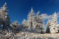 Taká zimná / 1.0286