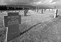 Friedhof Važec / 1.1154