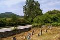 Cintorín pri kameňolome / 0.0000