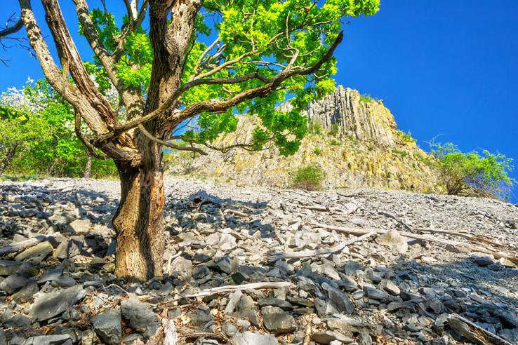 Pod Steblavou skalou