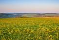 Jarná krajina po svitaní