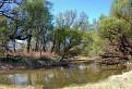 Farby jarnáho lužného lesa / 1.5333