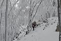 Malokarpatskou studenou rozprávkou / 1.0476