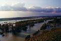 moravská záplavová / 1.2500
