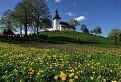 Jar v Martinčeku