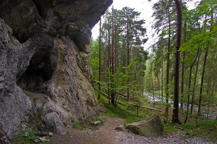 Demänovska dolina II