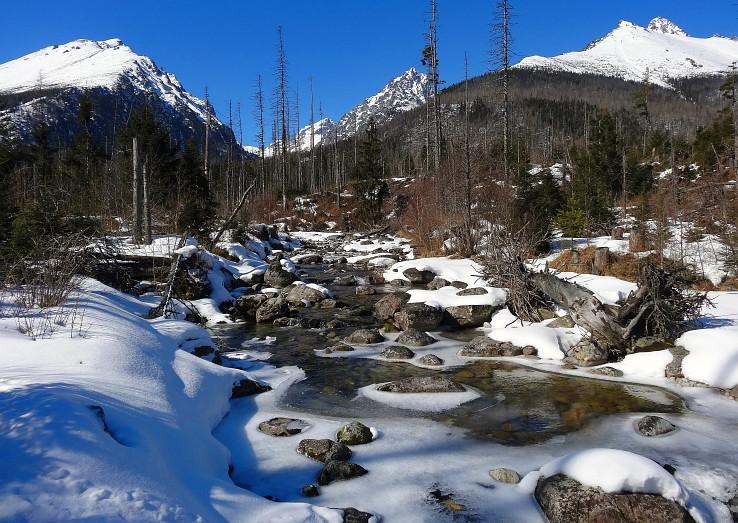 Studena dolina