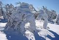 Snehom obalené, vetrom vytvarované / 1.1200