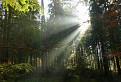 Explózia svetla