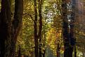Jesenná ozdravovňa