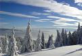Zimná perspektíva / 1.3542