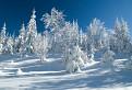 Zima ako sa patrí / 1.0345