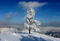 Zima zo Skalnatej / 1.0526