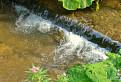 Vodopádik