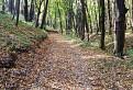 Jesennými chodníčkami Malých Karpát / 2.2632