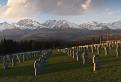 Nemecký vojenský cintorín Važec / 1.0690