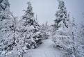 Zima na Chýžkach