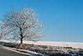 Belasá zima / 1.5238