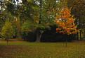jesen v parku