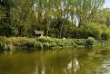 Cez rieku Moravu / 1.0556