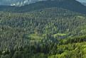 Ponad lesy / 1.0000