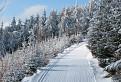 Zimná idylka na Skalke