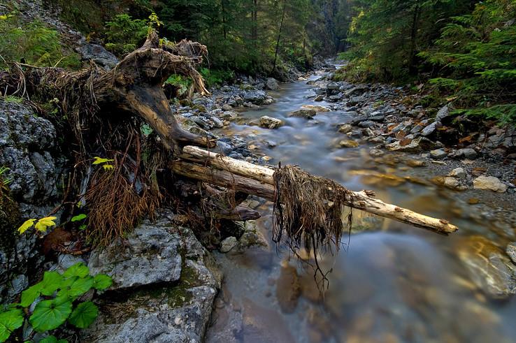 Juráňov potok