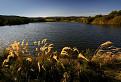 Grinavské jazerá / 1.0000