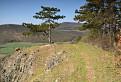 Kamenný vrch