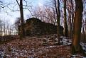 Zrúcanina strážnej veže pri Tekovskej Breznici
