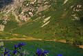Jastrabia veža / 1.0769