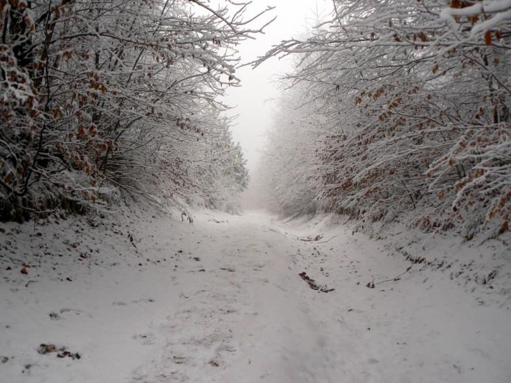 Snežná ulička