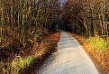 Cesta na planinu / 1.0625