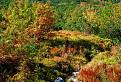 Trochen jesenných farieb / 1.2143