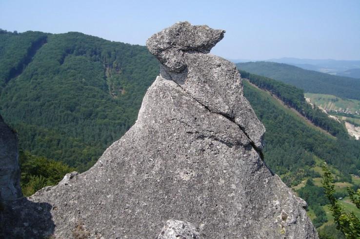 Kamenný chameleon