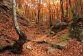 Jeseň v Súľovských vrchoch. / 1.0857
