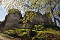 Ruiny Považského hradu / 1.2308