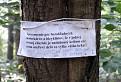 Aj takí sa potulujú lesom ... ))) / bez hodnotenia